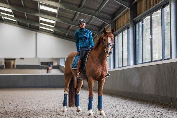 Equestrian Stockholm Fleecebandagen 4er-Set SS19