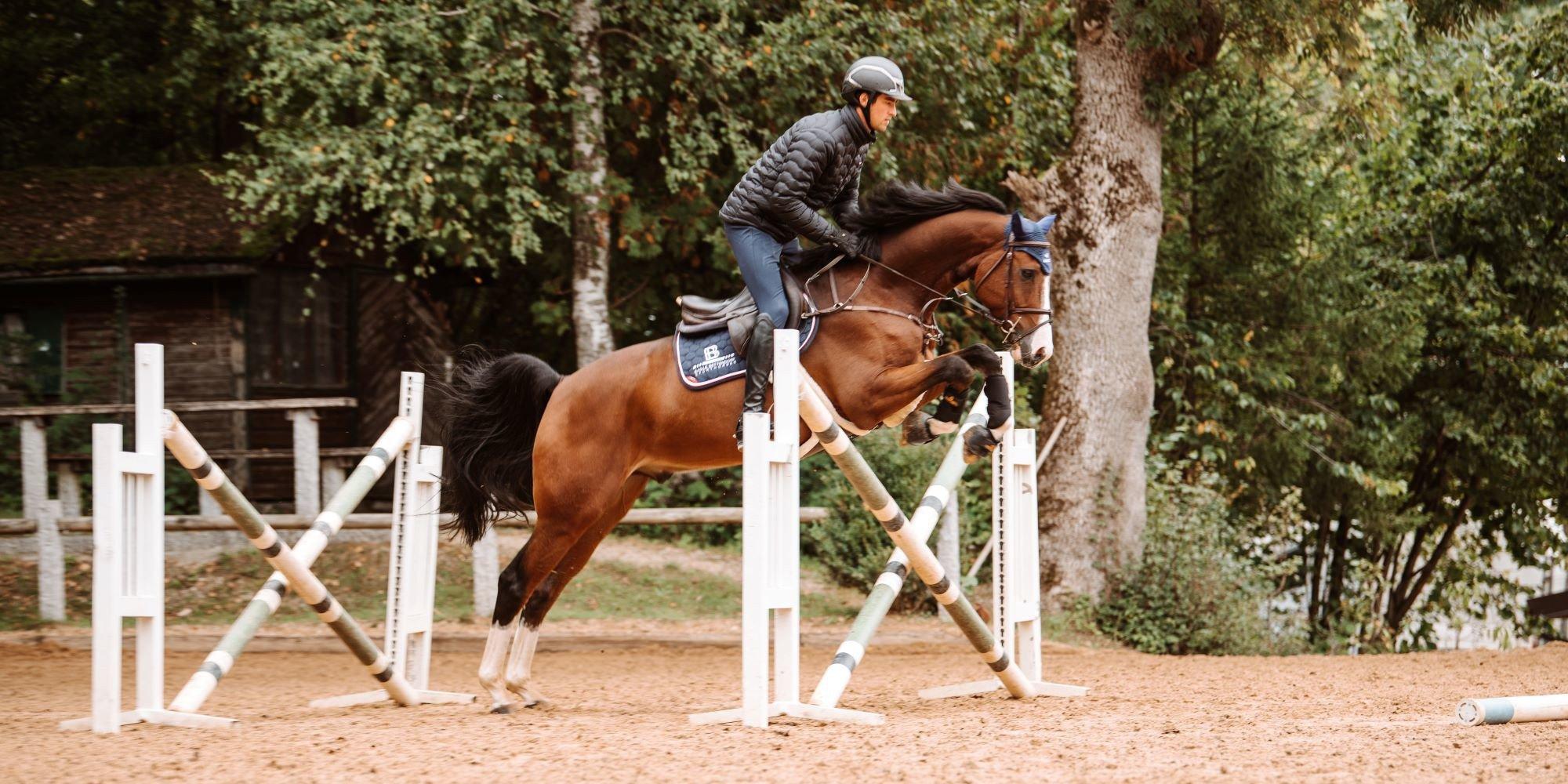 Springgymnastik: so nutzt du die Winterarbeit sinnvoll für dich und dein Pferd