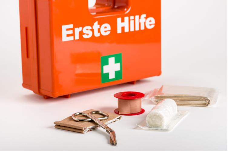 Erste-Hilfe-Ausrüstung für Pferde: Alle Infos zur Stallapotheke