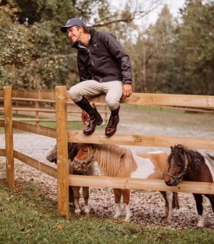 Schecke-Pferdefarbe