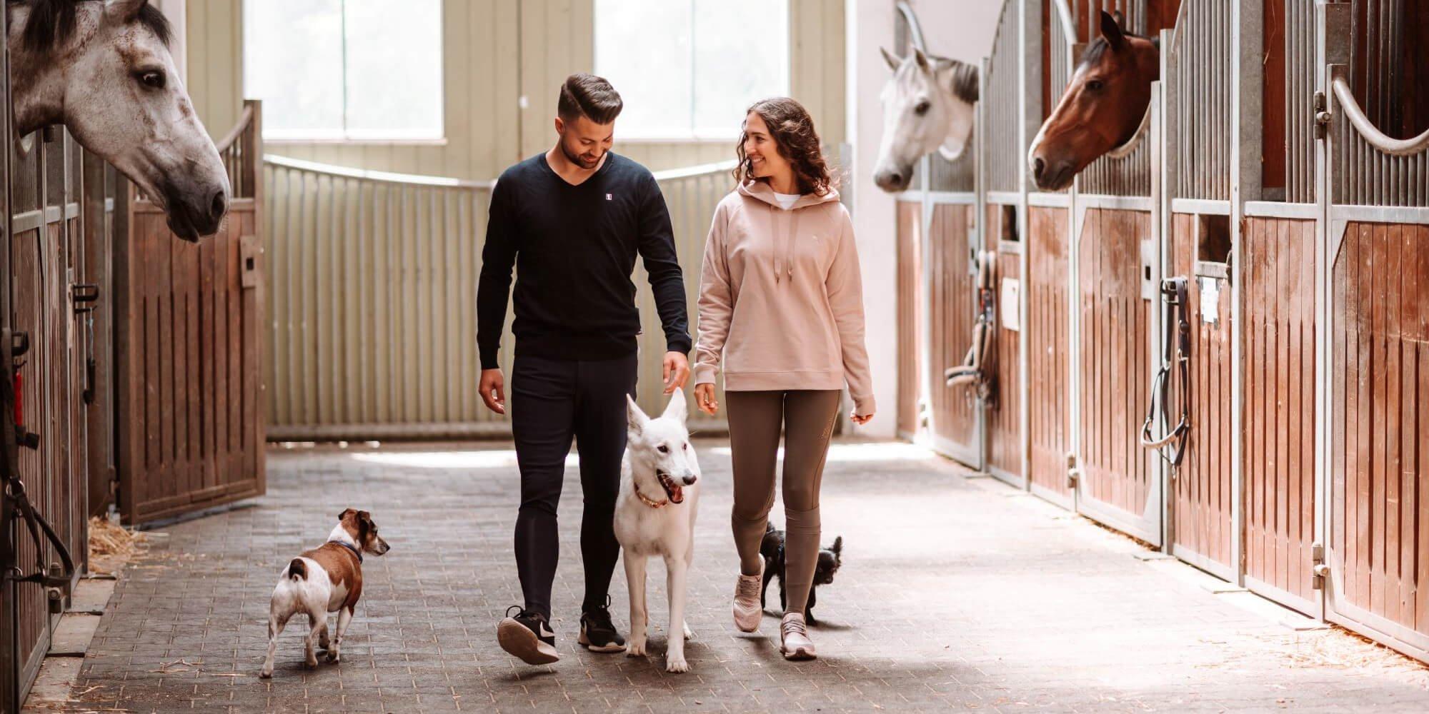 Reitbegleithund: So funktioniert es mit Hund und Pferd