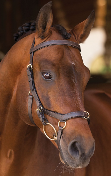Horseware Rambo Trense Micklem Multibridle
