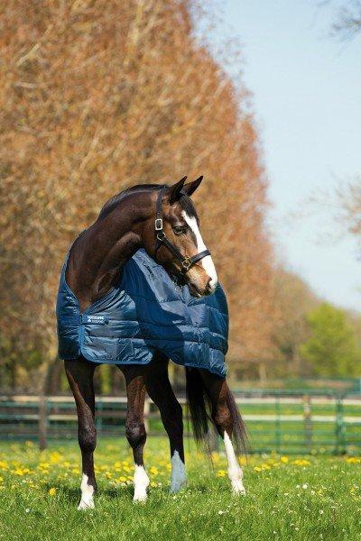 Horseware Unterdecke Liner 200g ABAD62