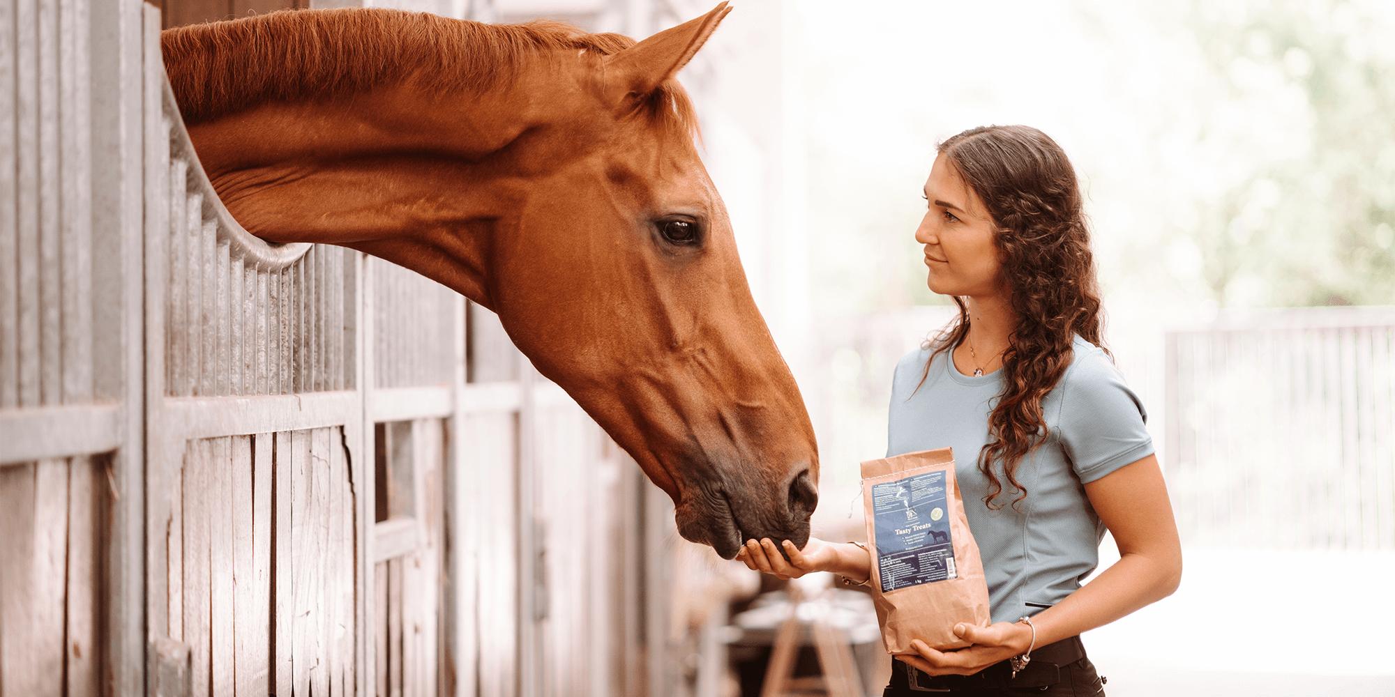 Grundregeln der Pferdefütterung: Die wichtigsten 10 Fakten