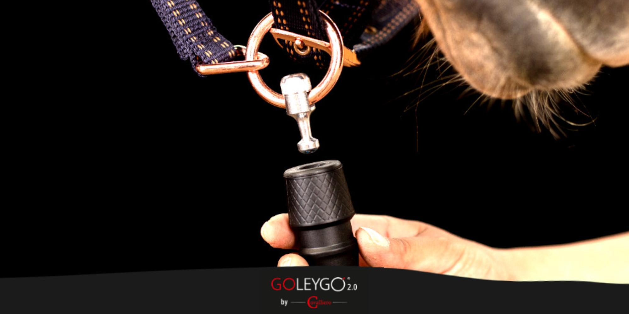 Produkttest des neuen GoLeyGo 2.0 Magnet-Verschlusssystems