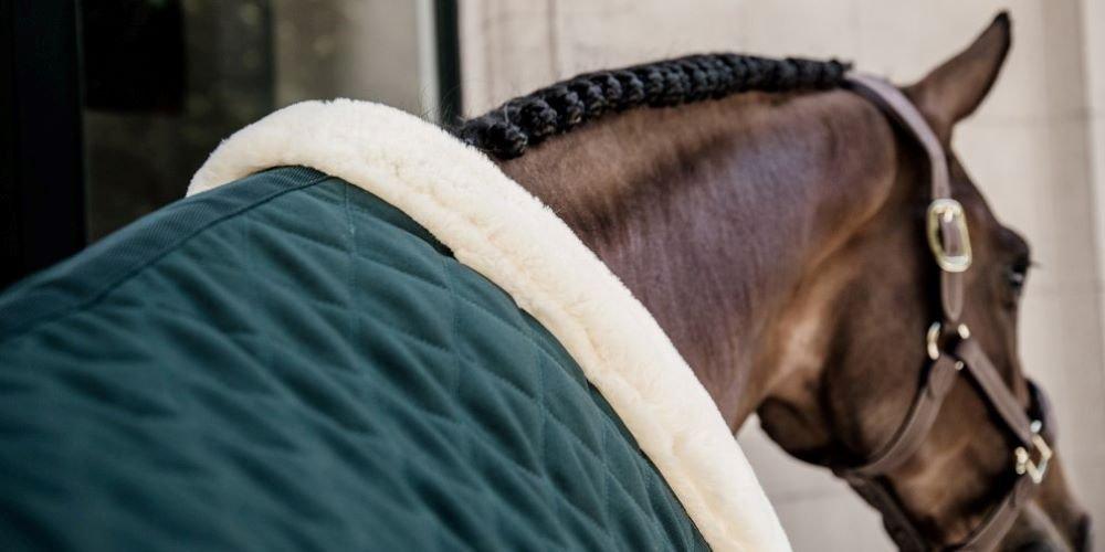 Die aktuelle Kollektion von Kentucky Horsewear und Kentucky Dogwear im Überblick