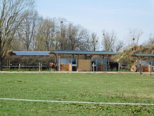 Aktivstall-Futterstation