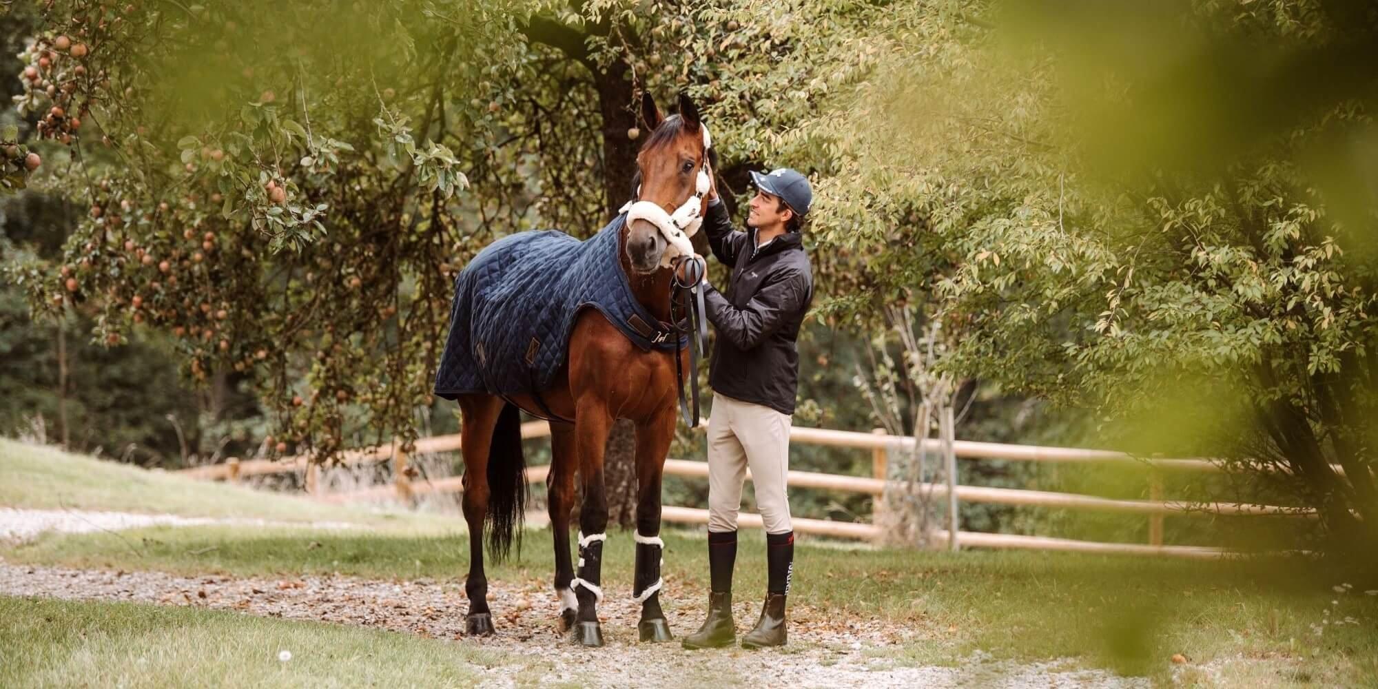 Winterdecke, Abschwitzdecke und Co. für Pferde - So trotzt ihr den kalten Temperaturen