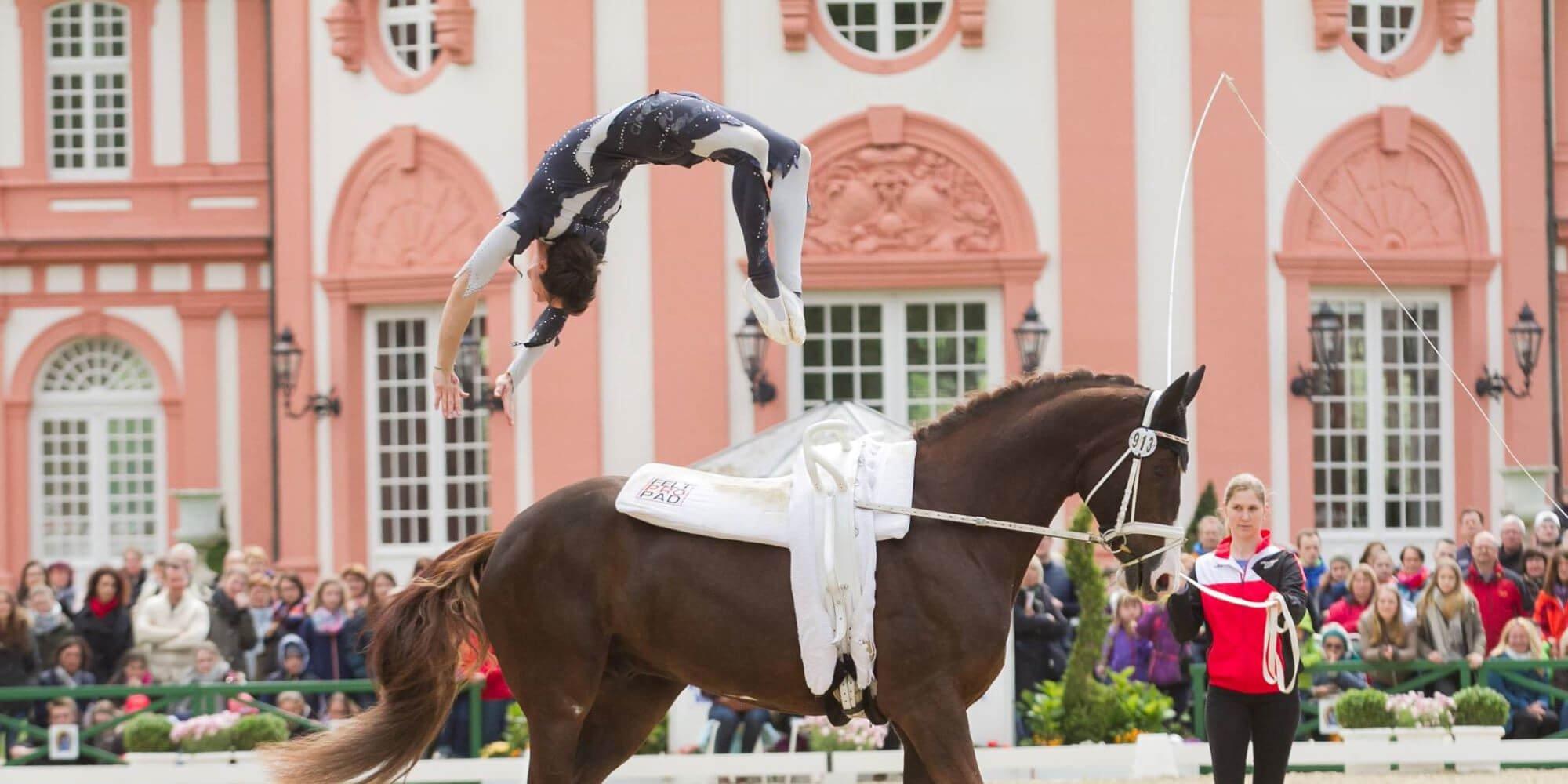 Voltigieren: Turnen auf dem Pferd