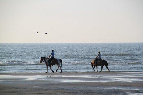 Urlaub-mit-Pferden-Meer3ZnZXhgBsfpd5