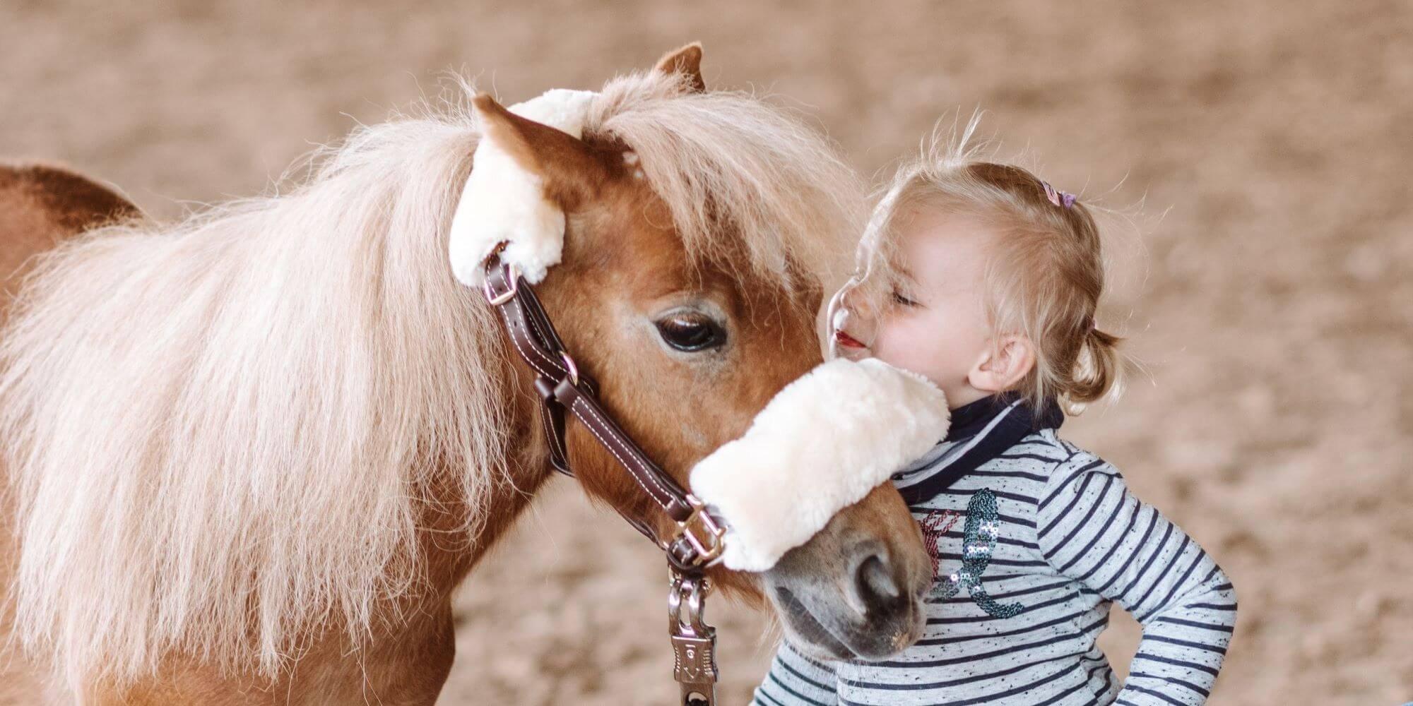 Pferde und Kinder: Was bewirkt Reiten bei Kindern?