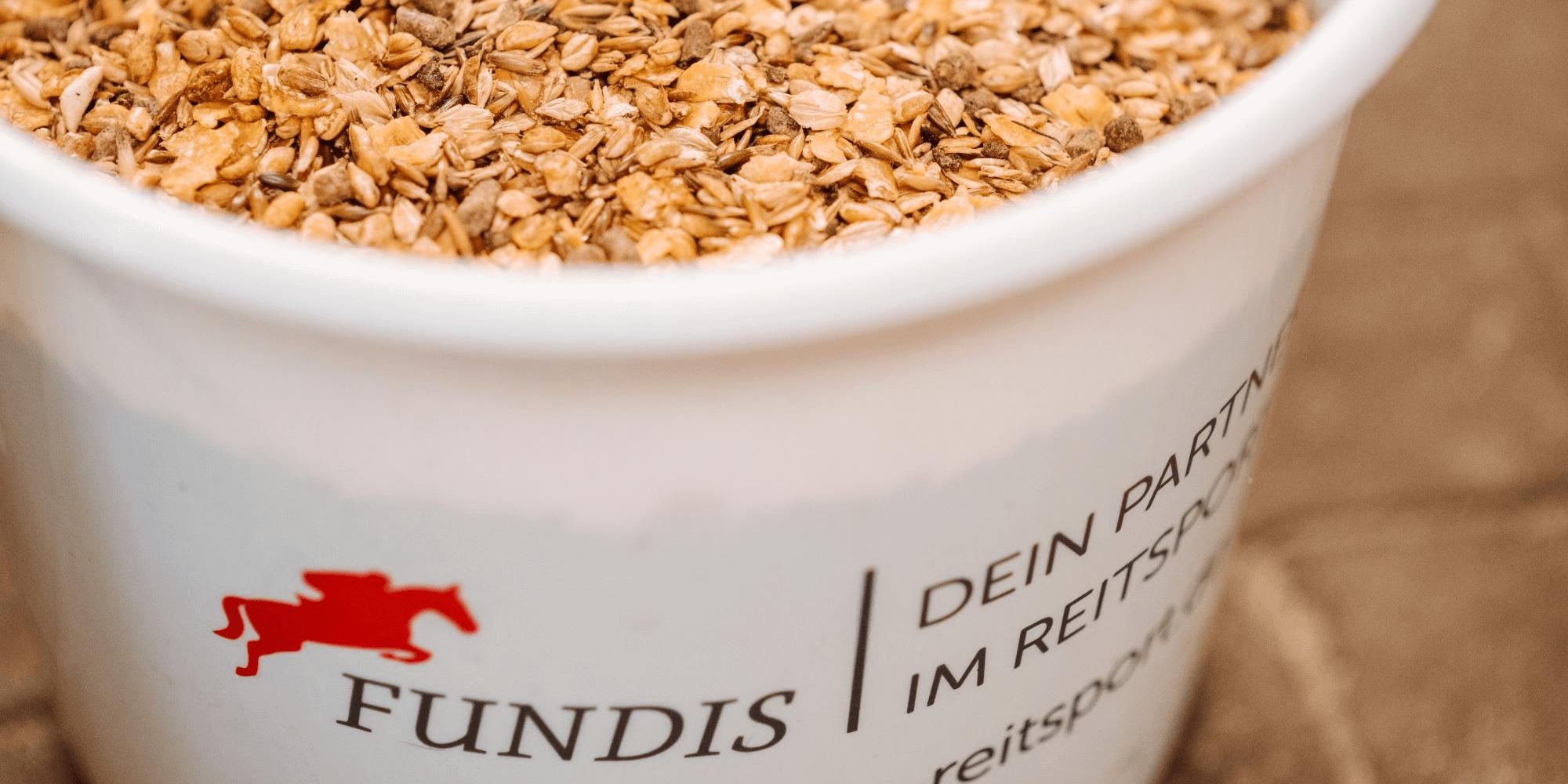 Kohlenhydrate für das Pferd: Das musst du wissen