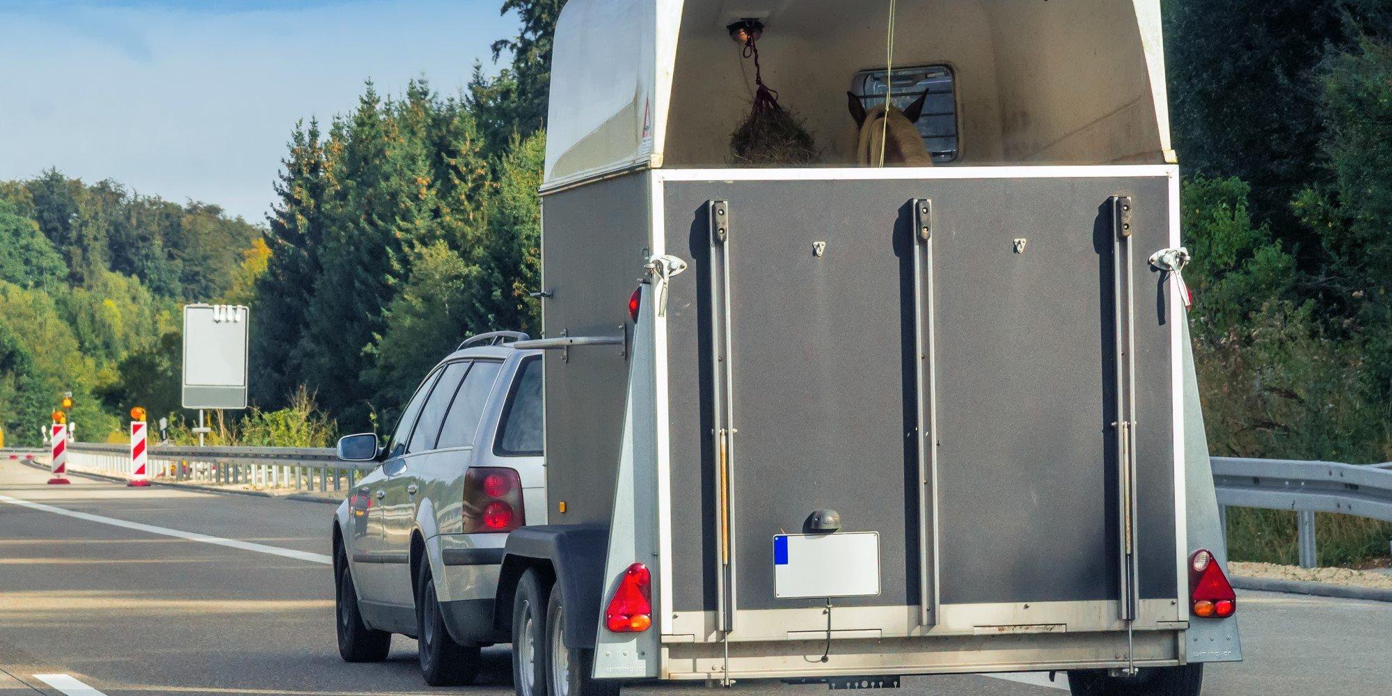 Fahren mit Pferdeanhänger: Alles Wichtige und die Unterschiedlichen Füherscheinklassen im Überblick