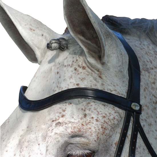 Dyon Dressur Stirnband V