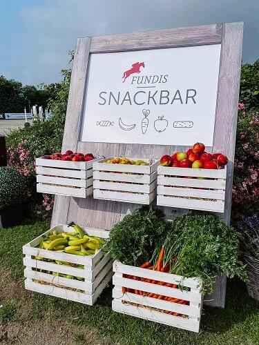 FUNDIS-Snackbar-1