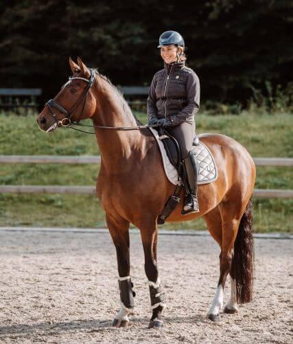 Kosten-Pferd8
