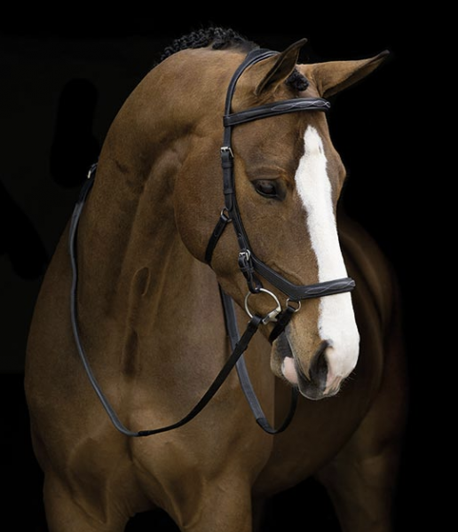 Horseware Rambo Micklem Trense Deluxe Competition English Leather