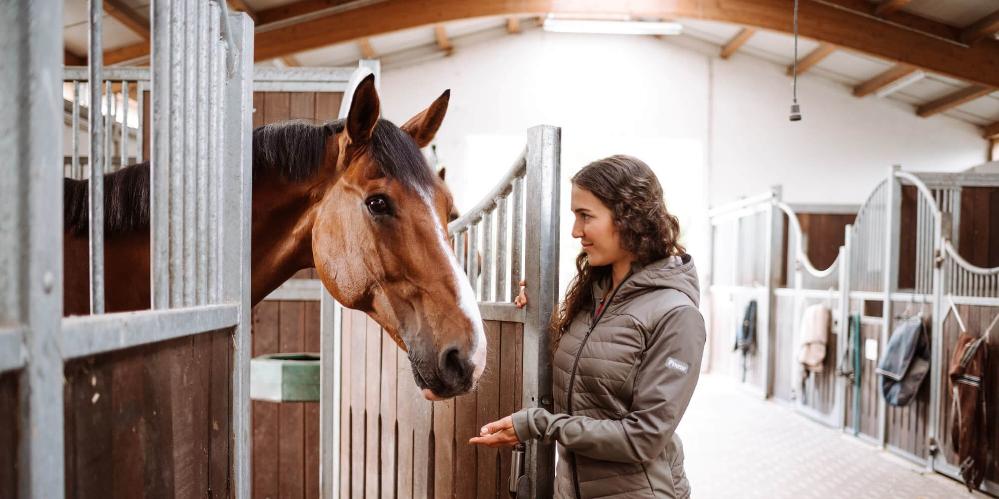 Alte Pferde reiten: So hältst du deinen Senior noch lange fit