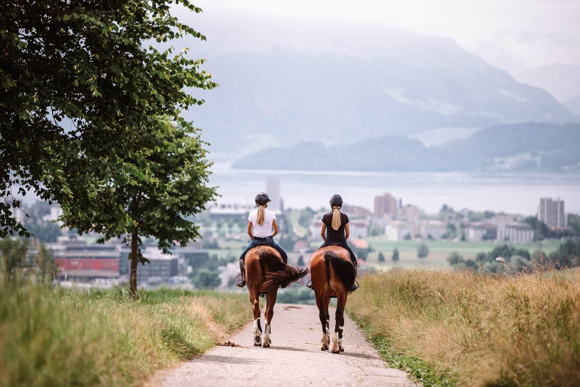 Urlaub mit Pferd: So wird die Reise entspannt