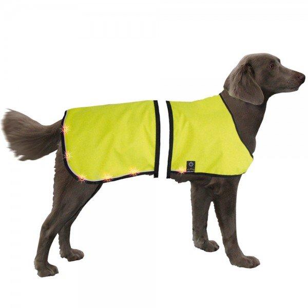Nobby Hundemantel LED Sicherheitsweste