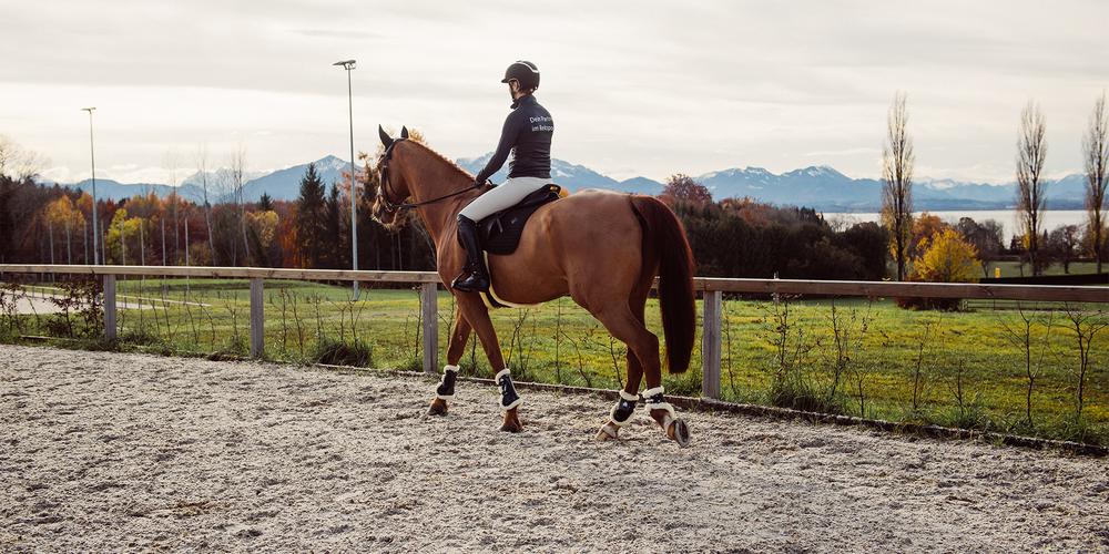 Die verschiedenen Hufschlagfiguren und Bahnregeln im Pferdesport