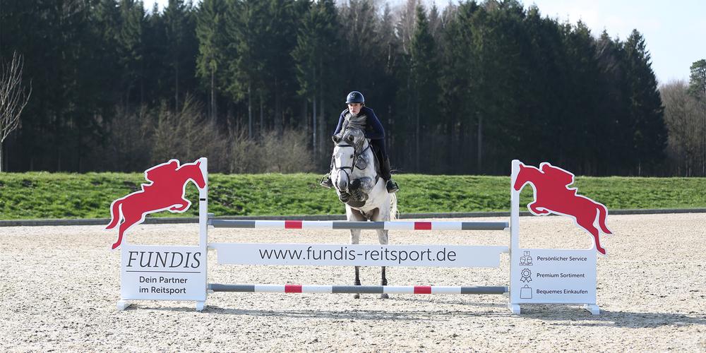 Die 10 beliebtesten Pferderassen in Deutschland